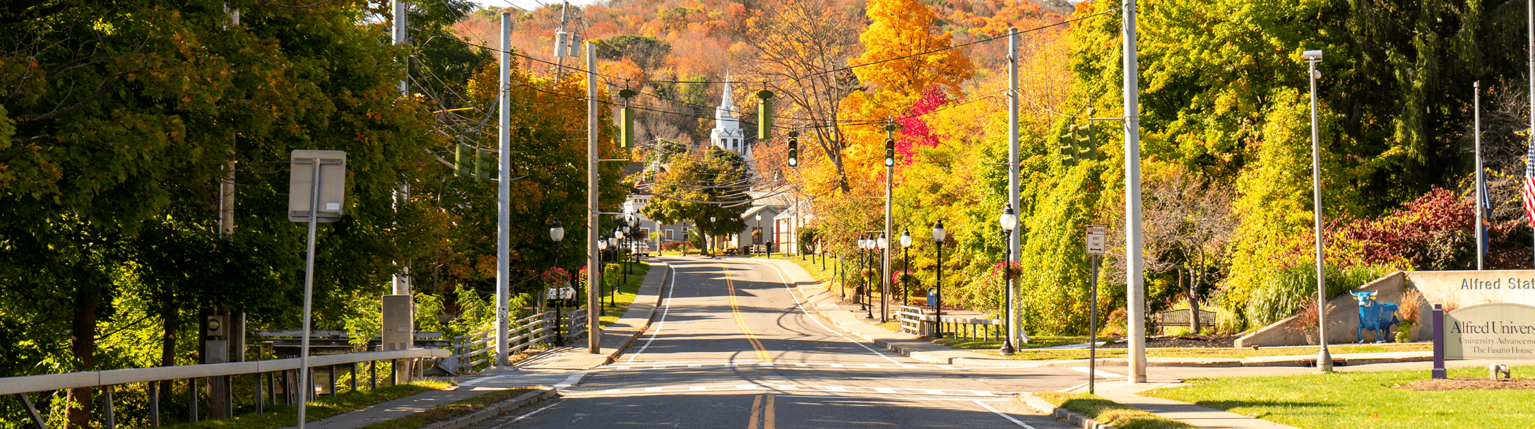 street with autumn leaves
